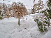 Dernières photos notre hiver 2014