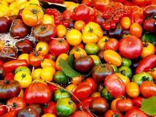TellSpec comment transformer votre iPhone Shazam alimentaire