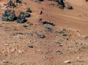 D'ici 2025, pourra faire pousser plantes planète Mars
