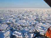 glaces banquise arctique polluées plastique