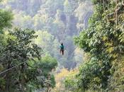 Gibbon Experience Huay Laos