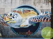 Plus 5000 œuvres street monde entier Google