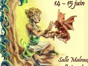 dédicaces week-end Luisant (28)