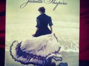 Sanditon, Jane Austen Juliette Shapiro