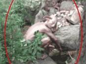 Chine: campeur photographie créature ressemblant Gollum