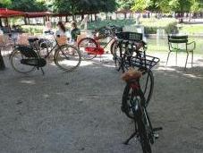 Tulipbikes, vélo 100% personnalisé