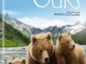 Critique Dvd: Terre Ours