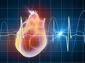 Antioxydants santé cardiovasculaire