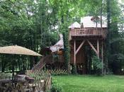 envies d'une nuit dans cabane arbre!