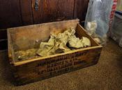 objets d'une ancienne cité sumérienne trouvés dans placard