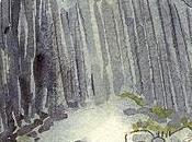 vers Vaðmalfjöll dans Fjords l'ouest