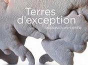 Exposition Terres d'exception Maison Métiers d'Art Pézenas