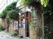 Paris bucolique, charme Passage Lhomme