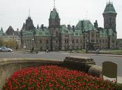 Quand Ottawa couvre trois millions tulipes