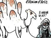 Areva, malédiction nigérienne
