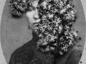 VIDéO SCULPTURE PHOTOGRAPHIE PEINTURE INSTALLATION ENCRE COLLAGE SANDRA AUBRY