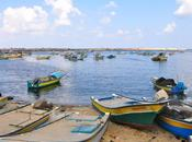 Retour Gaza, plaie ouverte