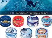 Protection océans quelle boîte thon choisir