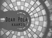 Dear Pola Kaamos