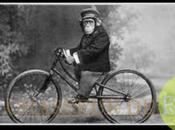 Christiane Taubira comparée singe…