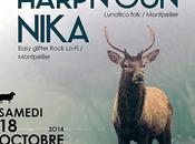 Concert folk féminin: HARPN'GUN NIKA