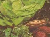 Méli-mélo salades jarret veau l'orange herbes fines