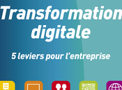 Parution livre Transformation digitale
