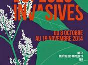 Metz Cycle conférences biodiversité