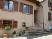 Visite domaine Albert Boxler Niedermorschwihr (Alsace) Rieslings