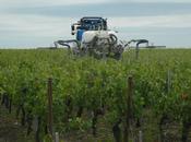 Parkinson liée pesticides: agriculteurs minimisent encore danger
