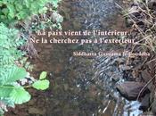 méditation Nicole Ferroni