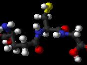 curcumine glutathion
