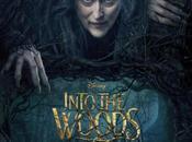 Nouvelle bande annonce Into Woods, Promenons-nous dans bois Marshall, sortie Janvier 2015.