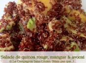 Salade quinoa rouge mangue l'avocat