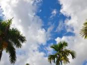 Piscine, barbecue voisinage bienvenue chez Floride