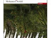 nouveau Mohamed NEDALI arrivé!