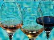 Vins Provence pour Nuls Guide Gratuit