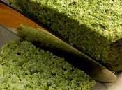 Terrine brocolis
