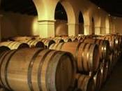 Argentine route vins