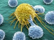 Cancer: découverte sensationnelle