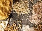 ALIMENTATION: Céréales grains entiers, espérance prolongée JAMA Internal Medicine
