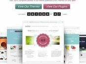 trouvez thèmes Premium pour Wordpress