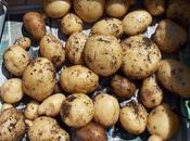 Pommes terre autres tubercules choix pour cette année