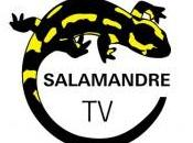L'héritage Dane Rudhyar soir Salamandre avec Samuel Djian Gutenberg Jean François Berry