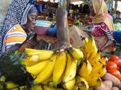 Tartinade haricot ananas