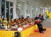 Station service, seven eleven repas moines (photos)