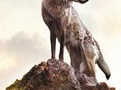 Dernier Loup, critique