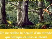 Épées Verre (T4) Dolmon