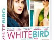 CINEMA: [DVD] White Bird (2014), retour femme disparue Blizzard return missing woman