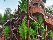 Vous rêvez d'habiter dans arbres, Turin c'est possible